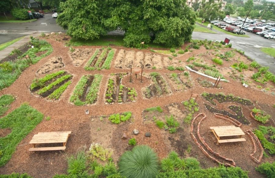 Permaculture garden photos for Local landscape gardeners