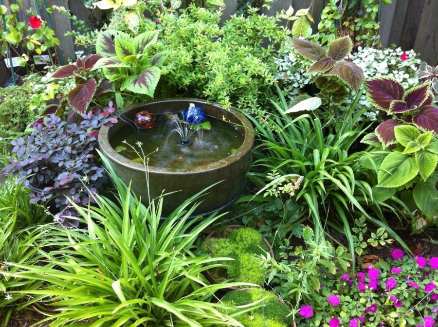 Shade garden photo for Partial shade garden designs