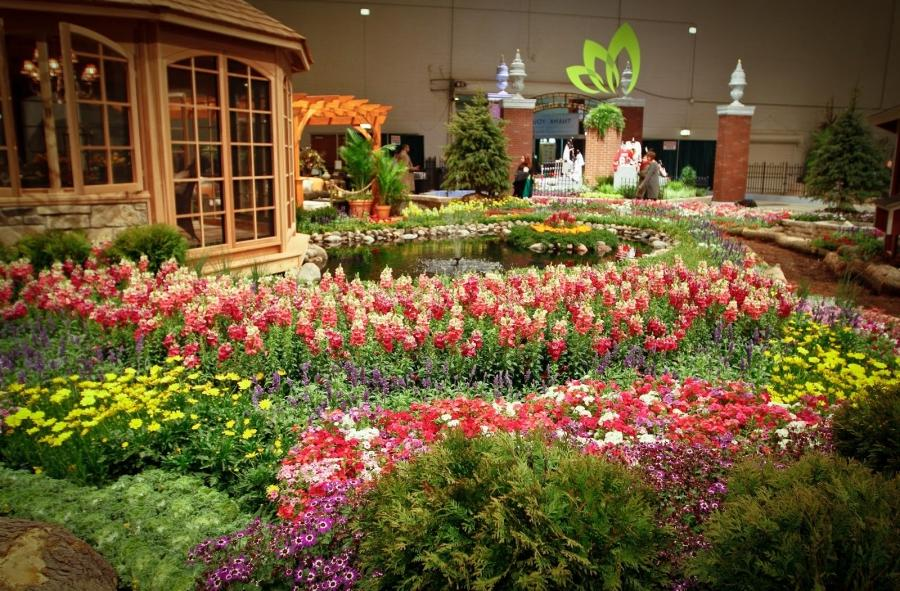 Chicago Flower Garden Show Photo Contest