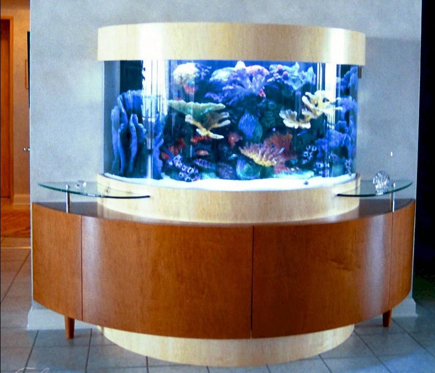 Custom Aquariums Photos