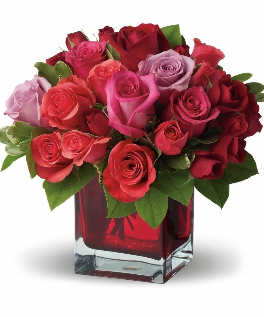 Valentine Flower Photos