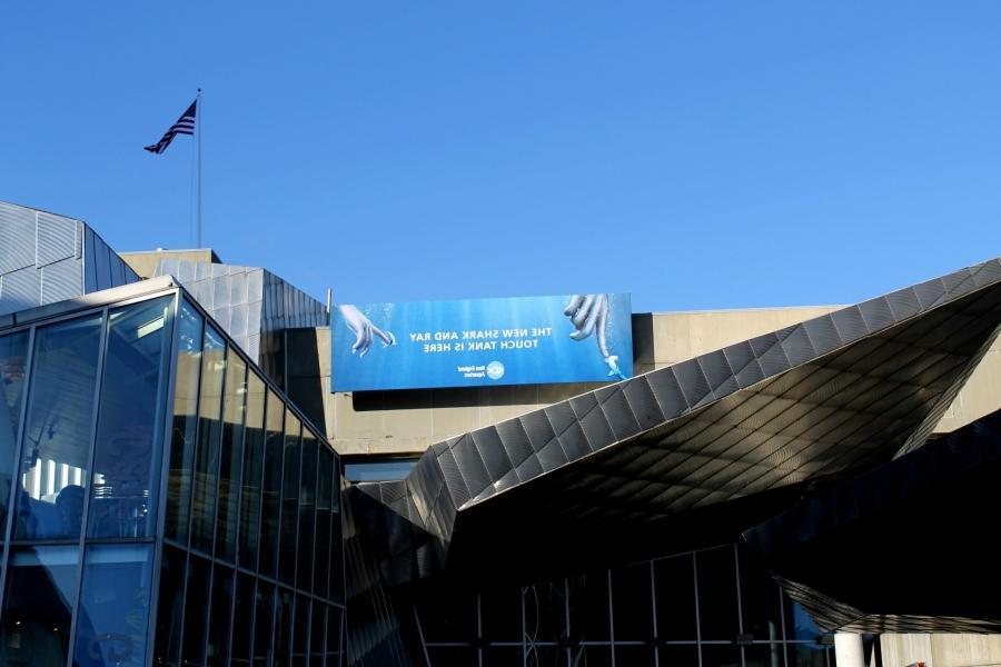 Boston Aquarium Photos