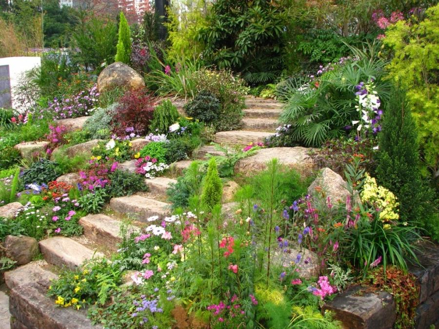 Hillside rock garden photos for Hillside rock garden designs