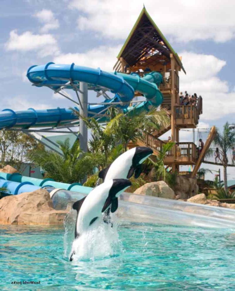 Seaworld Busch Gardens Photo Adventure