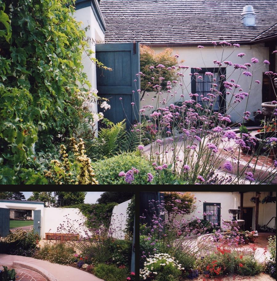 Photos of small courtyard gardens for Images of small courtyard gardens