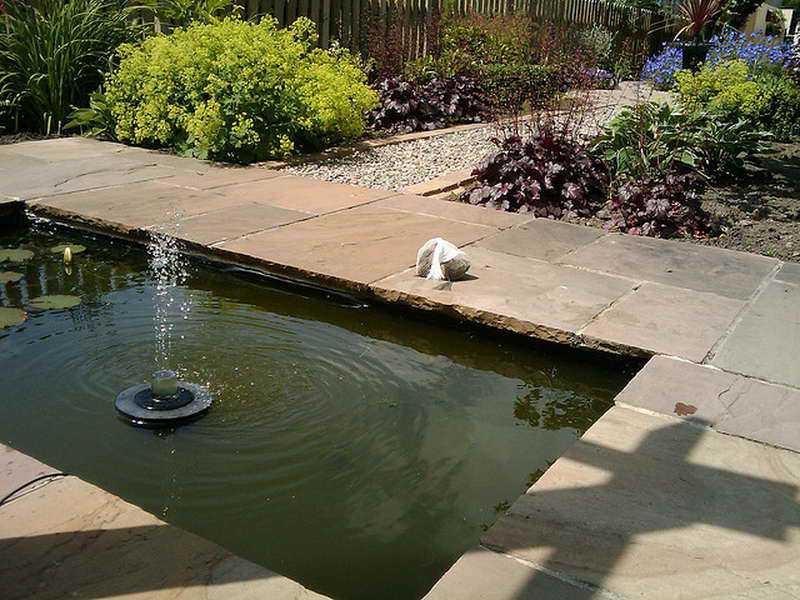 Small water garden photos for Small water garden