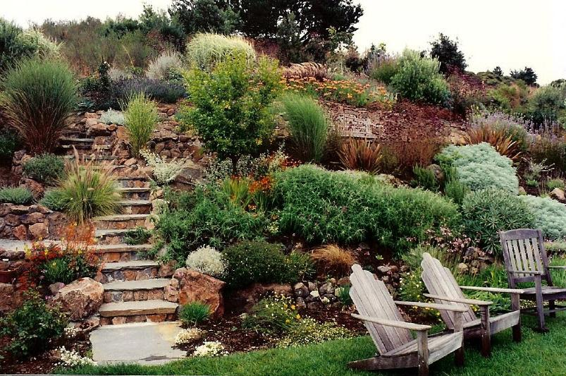 Photos of gardens on slopes