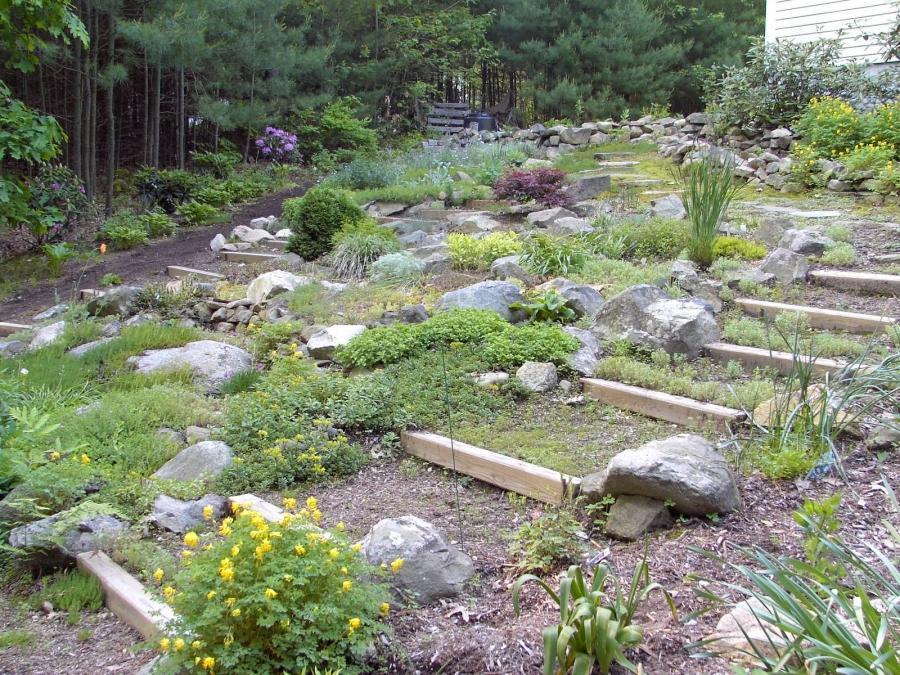 Garden Ideas Small Landscape Gardens Pictures Gallery: Photos Of Small Rock Gardens