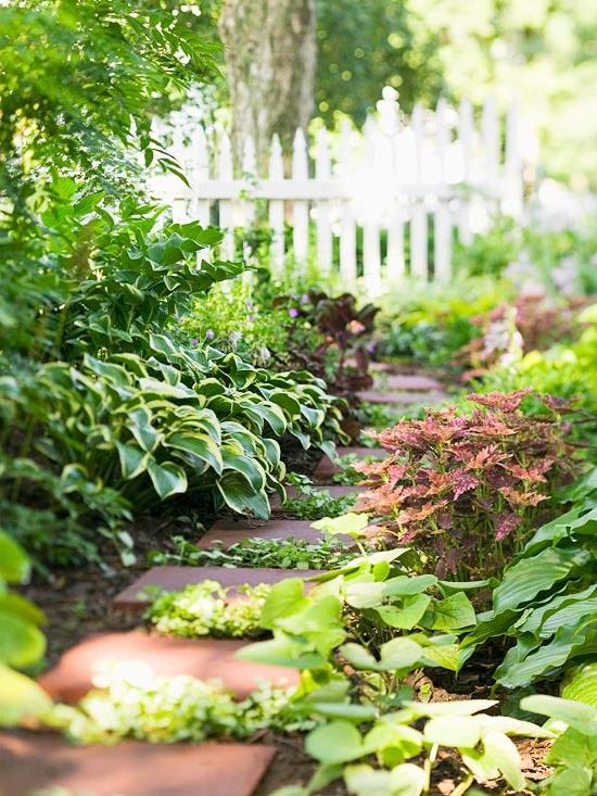 Shade Gardening - Planning for Color and Interest with Shade