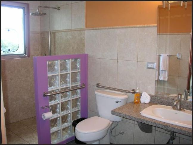 Handicap Bathroom Photos
