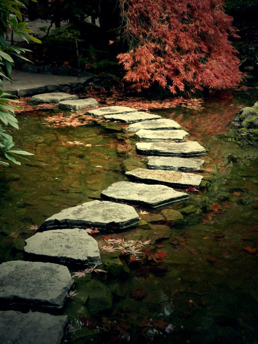 Landscaping stepping stones photos