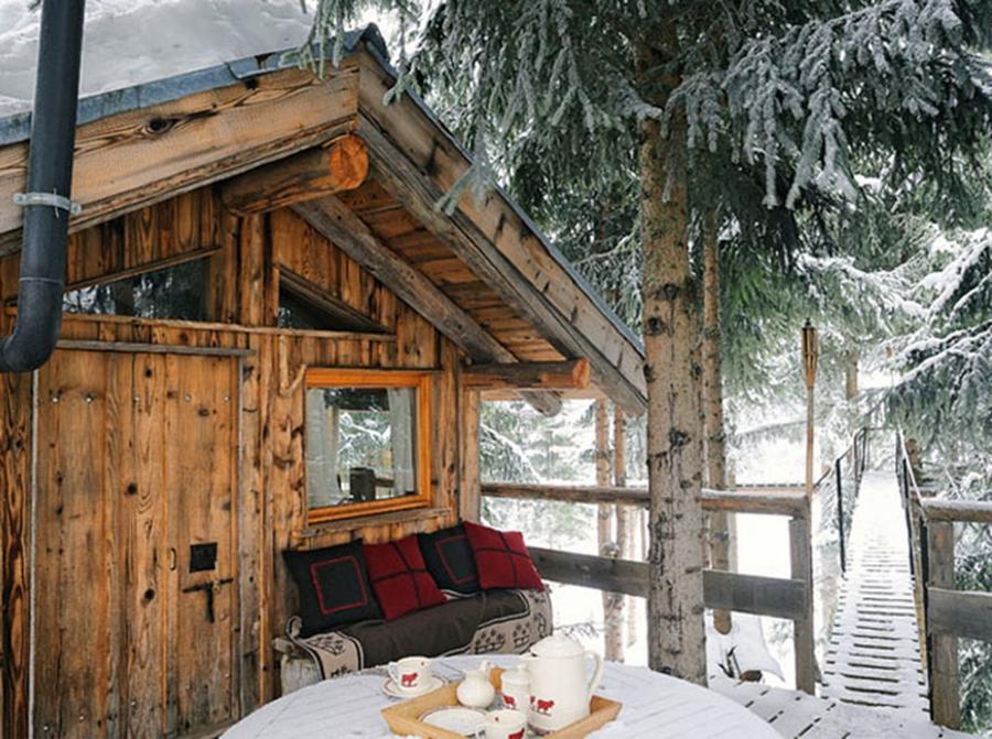 Cabin Interior Photo Wilderness