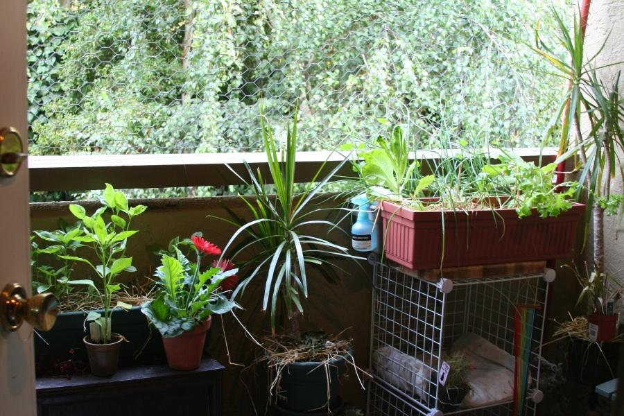 ... Apartment Balcony Decorating Ideas With Balcony Garden With...