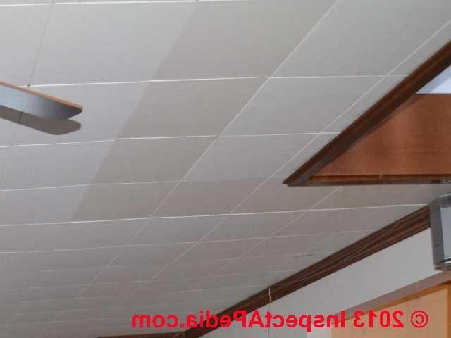 Photos Asbestos Ceiling Tiles