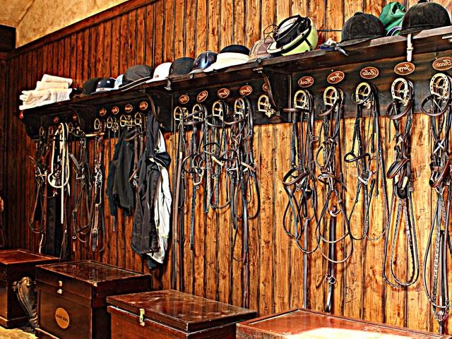 Equine complex detail tack room with wood paneling