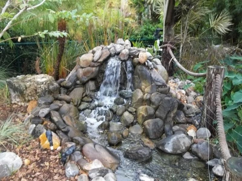 Garden ponds and waterfalls photos for Koi pond builders tampa