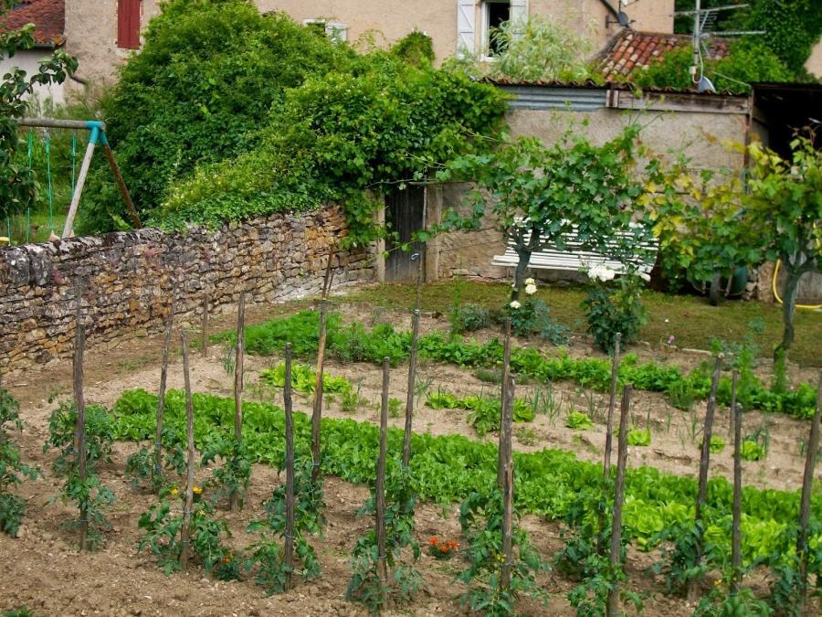 Photos of french vegetable gardens for French vegetable garden design