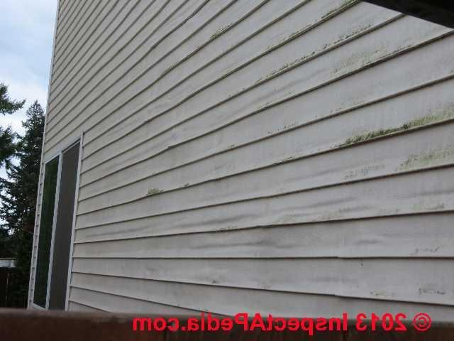 Vinyl Wood Siding Photos