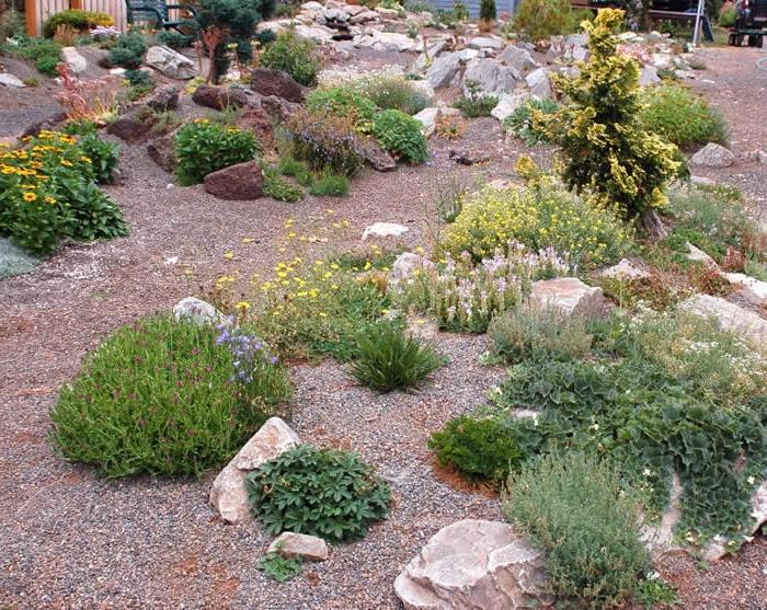 Beautiful rock gardens photos for Creating a rock garden