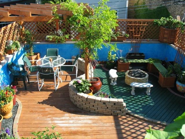 Garden Centre: Patio Container Garden Photos