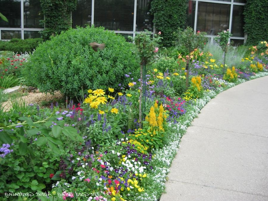 Perennial gardens photo gallery for Free perennial flower garden designs