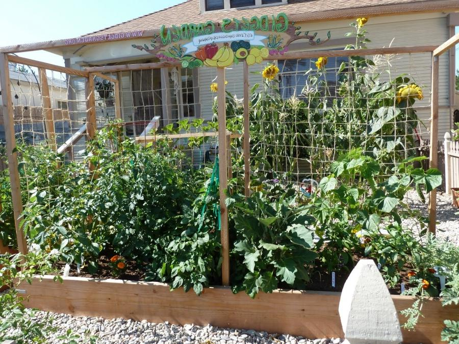 Small garden spaces photos - Vegetable gardening in small spaces image ...