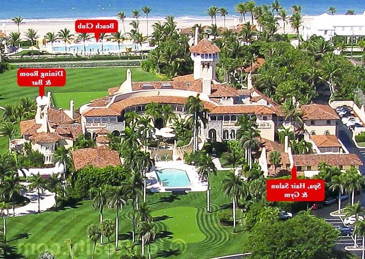 Click here to see more photos and analysis of Donald Trumpu Palm...