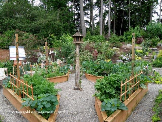 Photos vegetable gardens