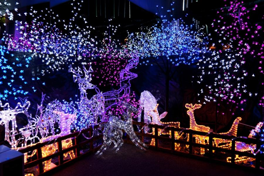 Outstanding Outdoor Christmas Decorations With Bright Lights At...