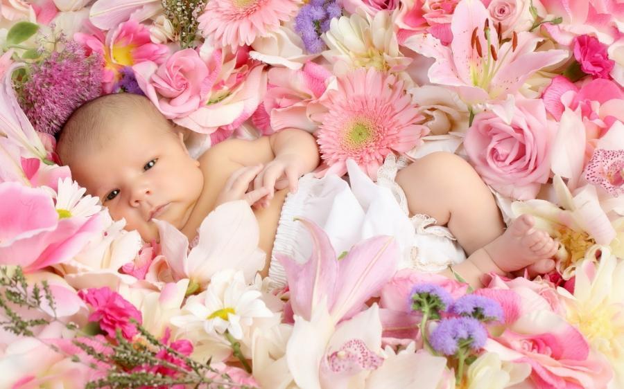 Фото новорожденных девочек с цветком