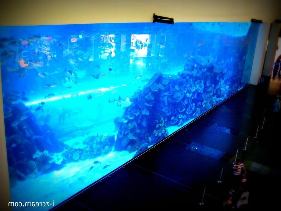 Dubai mall aquarium leak photos for How to fix a leaking fish tank