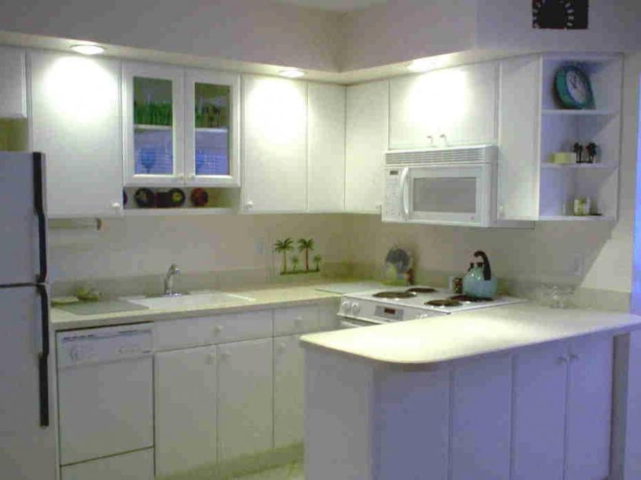 Condo Kitchen Remodel Photos