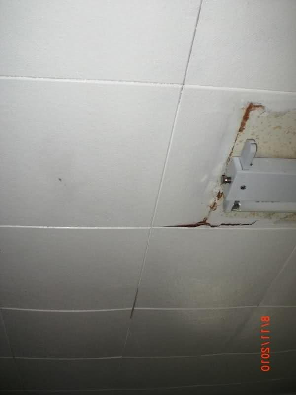 Celotex Ceiling Tile Photos