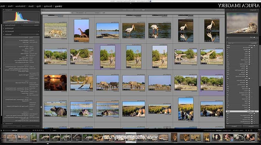 lightroom photo software