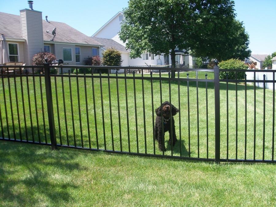 Aluminum fence photo gallery