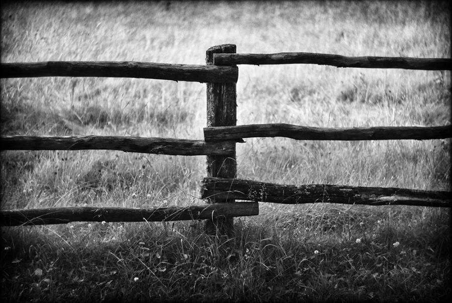 Fence of separation