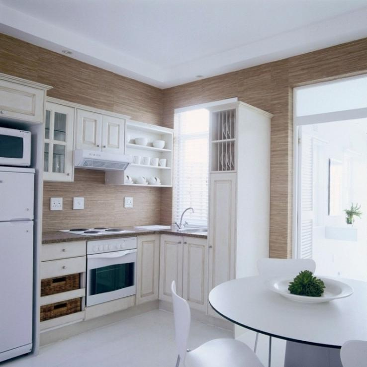 Small apartment kitchen designs photos for Apartment kitchen designs photo gallery