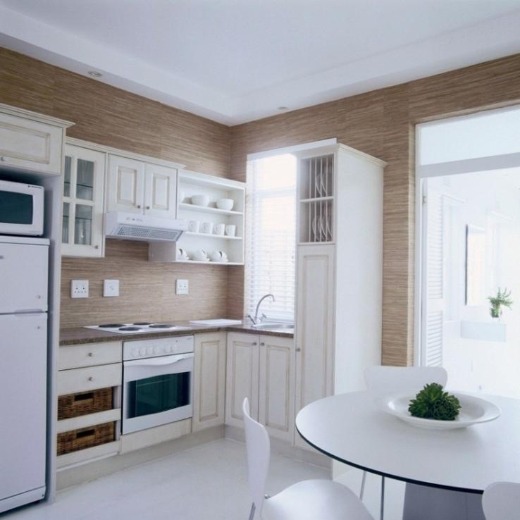 Small Apartment Kitchen Designs Photos