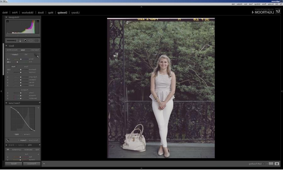 how to make a photo negative in lightroom