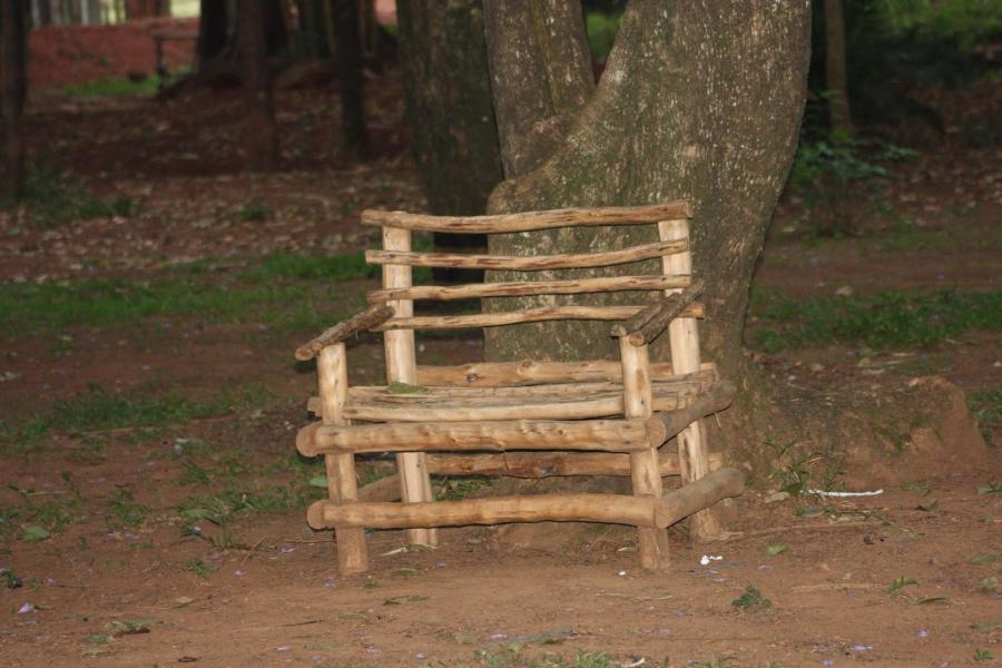 One Of The New Benches At Muliro Gardens In Kakamega