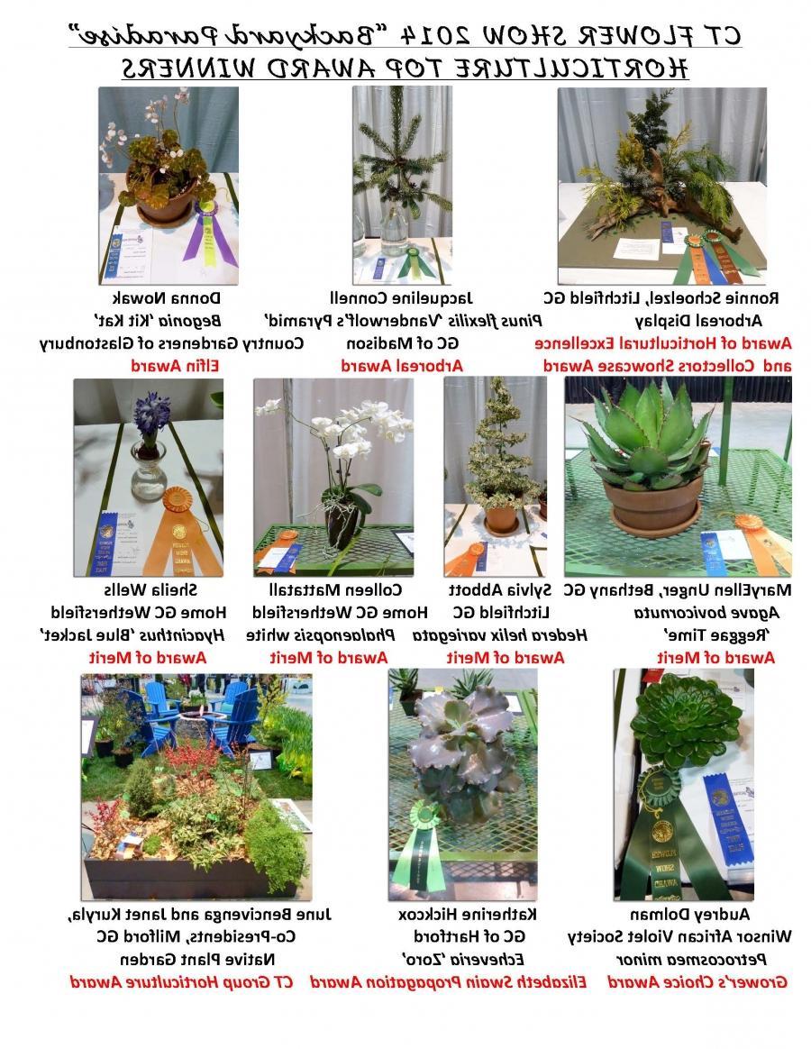 Garden Club Flower Show Photos