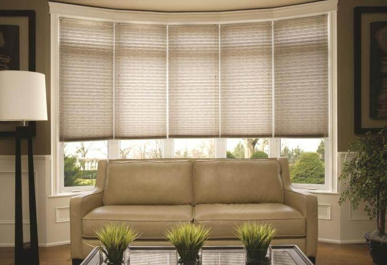 Living Room Window Treatment Photos: window treatments for bay window in living room