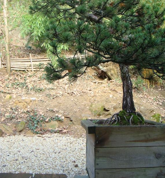 Photo decoration jardin terrasse - Decoration terrasse de jardin ...