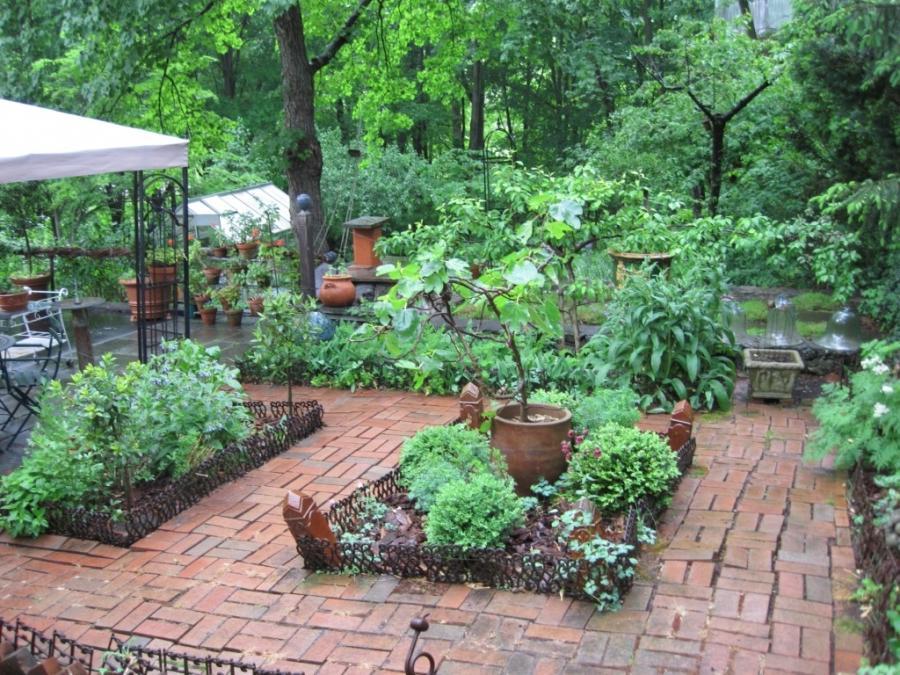 Herb garden design photos for Herb garden design