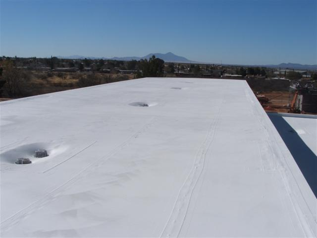 Classifying Roof Coatings by Binder  Carrier Type