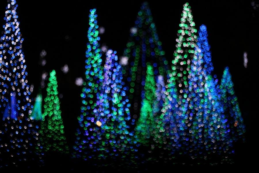 Bellingrath Gardens Christmas Lights Mobile Al  Colour