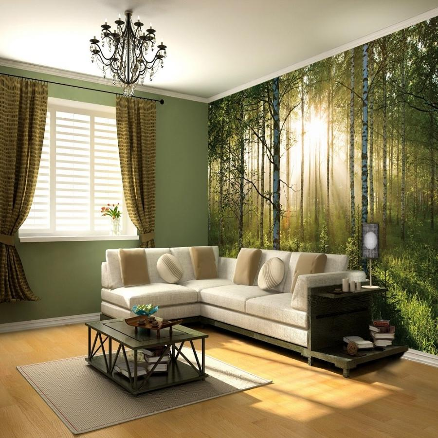 Wallpaper murals from photos for Mural room white house