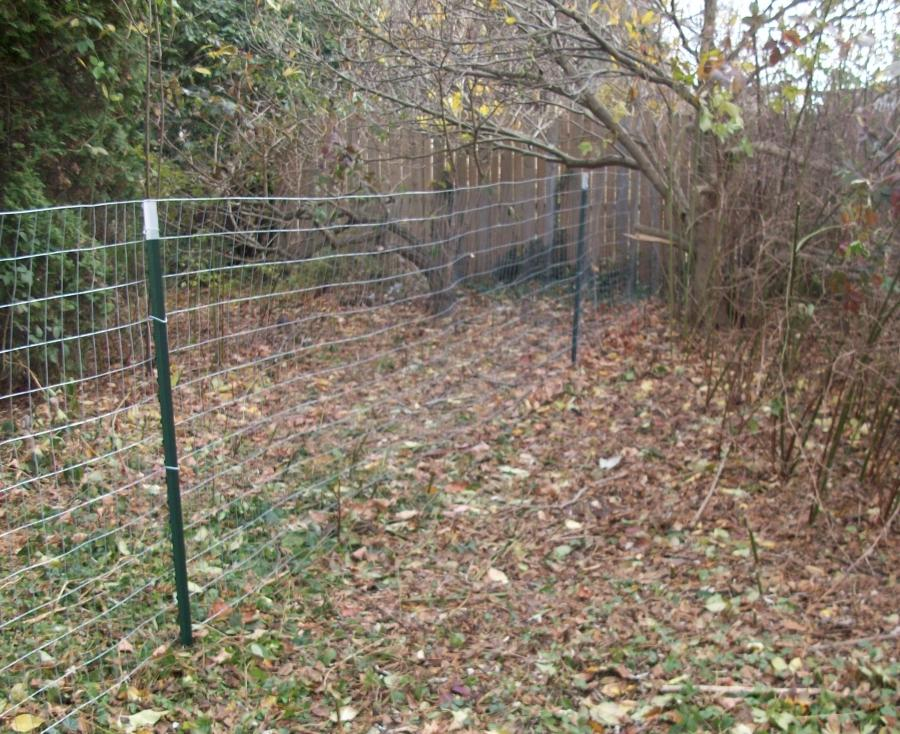 photos of welded wire fences