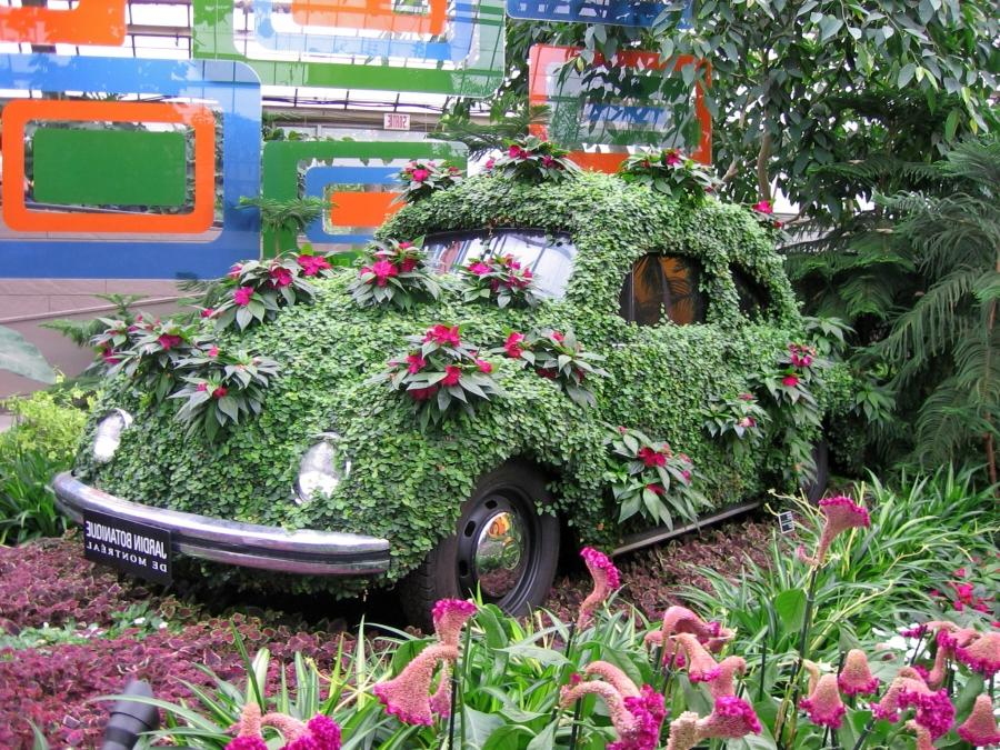 Flower covered Beetle in the Montreal Botanical Garden...