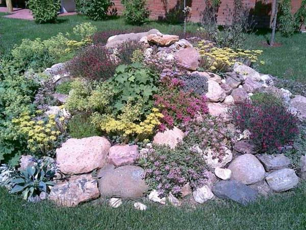 Simple Rock Garden Photos